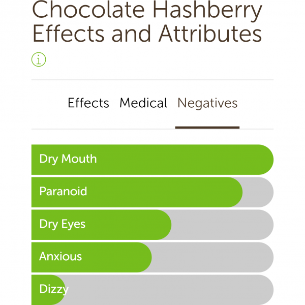 Chocolate Hashberry